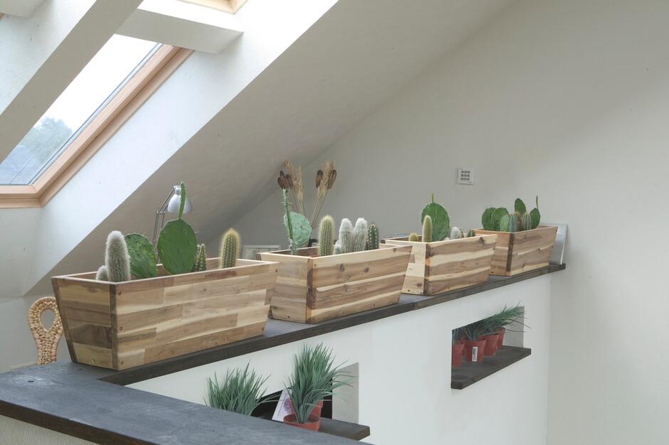Beliebt Bevorzugt Dachfenster mit Blumen & Pflanzen ausstatten | VELUX Magazin @NM_08